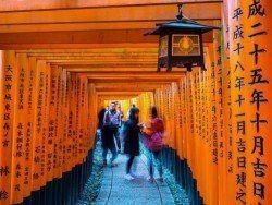 Kiotas. Romantiška pažintis su nacionalinėmis vertybėmis