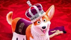 Kuninganna corgi